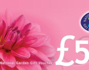 Win a £50 Garden Voucher