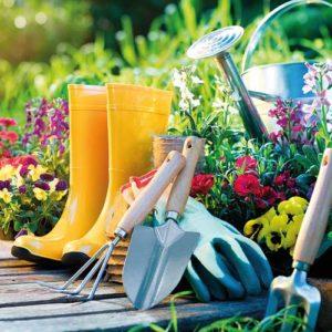 Garden wellies