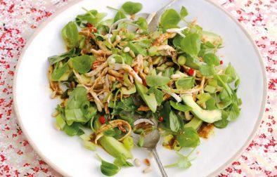 Japanese Chicken & Avocado Salad