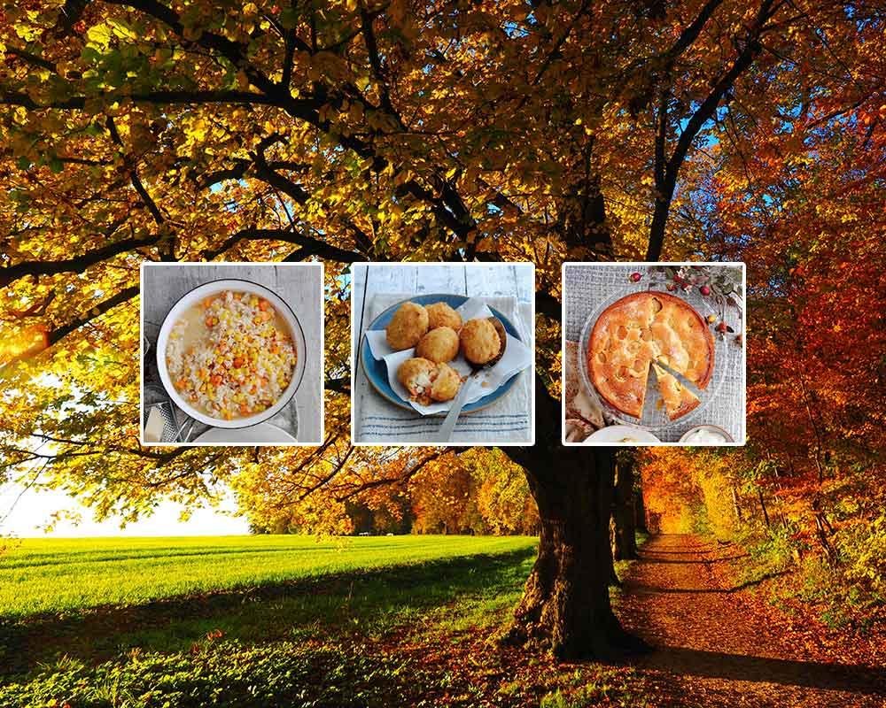 Our favourite autumn recipes
