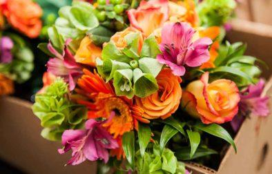 Win a bouquet