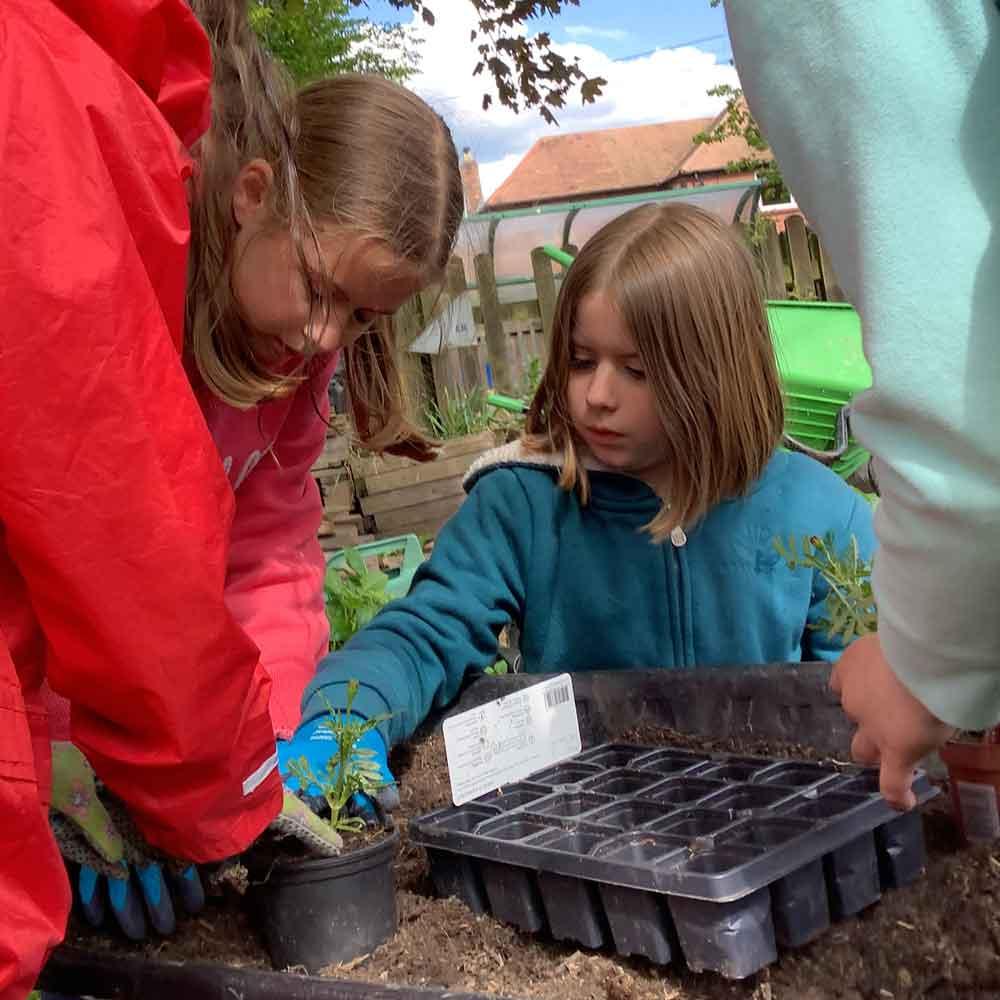 National Children's Garden Week